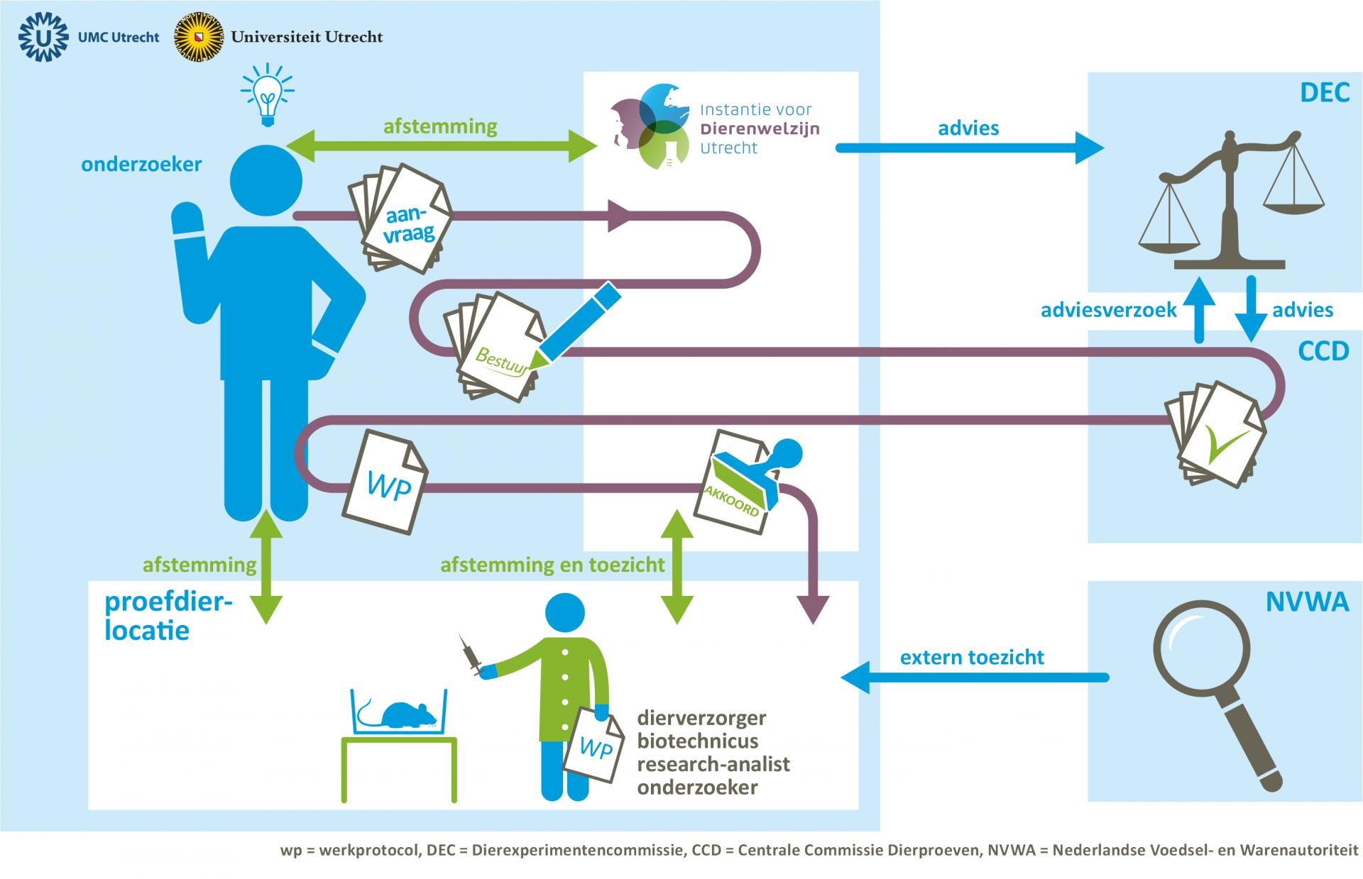 Infographic van idee naar dierproef