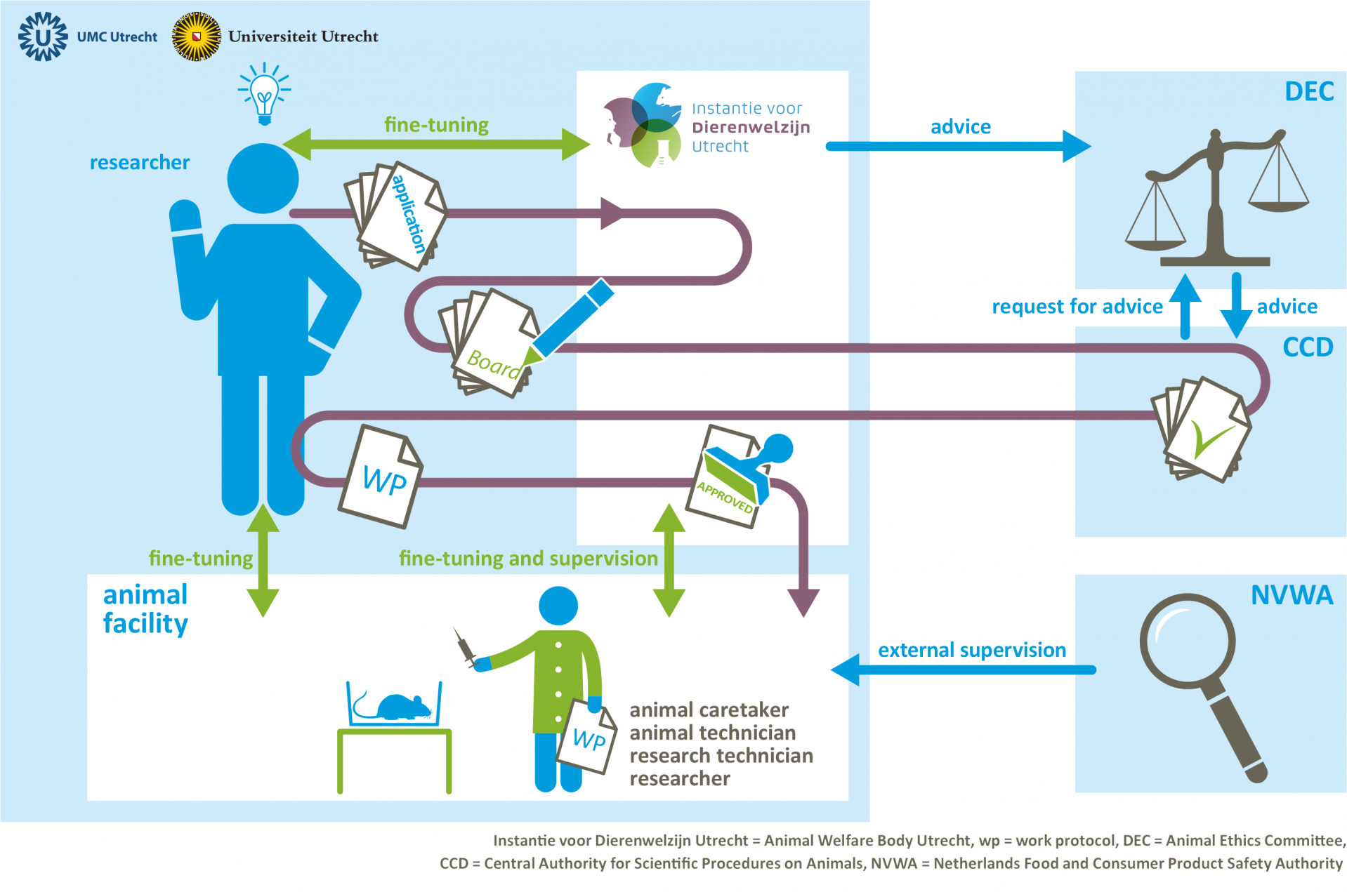 Infographic from idea to animal experiment